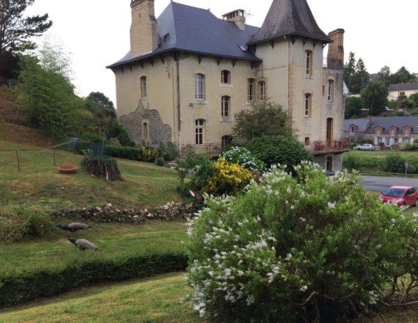 Villa Tranquillité, jardin